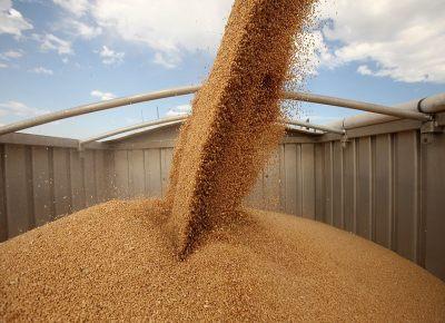 Условия перевозки зерна